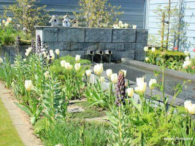 Coole tuin - Kerkdriel 10 - Fhreja - Ontwerpbureau Groene Leefomgeving