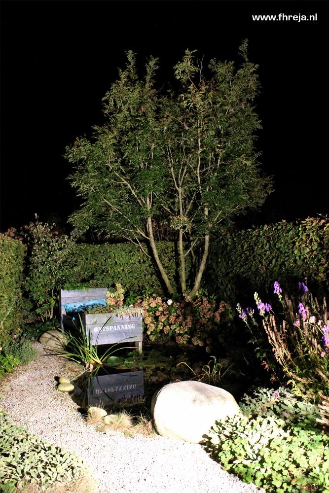 Tuinfotografie - Tuin bij nacht - Bed - Fhreja - Ontwerpbureau Groene Leefomgeving