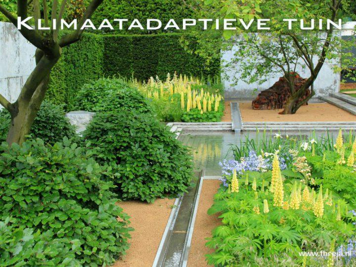 Klimaatadaptieve tuin