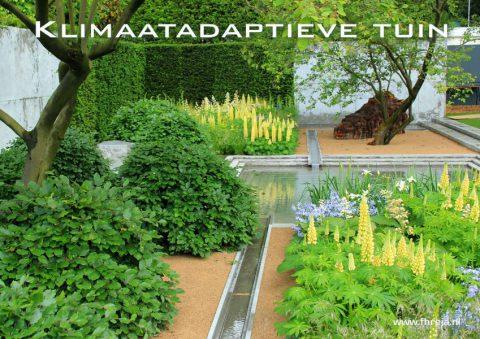 Klimaatadaptieve tuin - Fhreja - Ontwerpbureau Groene Leefomgeving