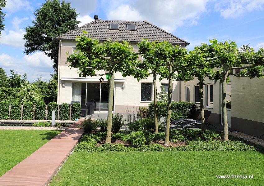Tuinconsult - Tuinrenovatie revitalisatie Beplantingsupdate - Nuland - Fhreja - Ontwerpbureau Groene Leefomgeving 08
