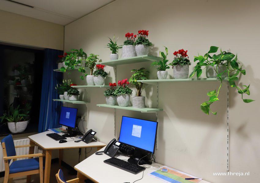 Ziekenhuis Tergooi - Blaricum planten - Fhreja - Ontwerpbureau Groene Leefomgeving 03