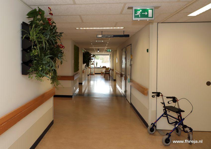 Ziekenhuis Tergooi - Blaricum - Fhreja - Ontwerpbureau Groene Leefomgeving 17