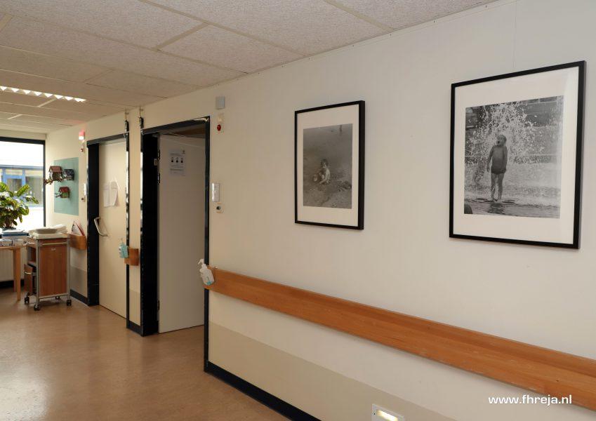 Ziekenhuis Tergooi - Blaricum - Fhreja - Ontwerpbureau Groene Leefomgeving 18
