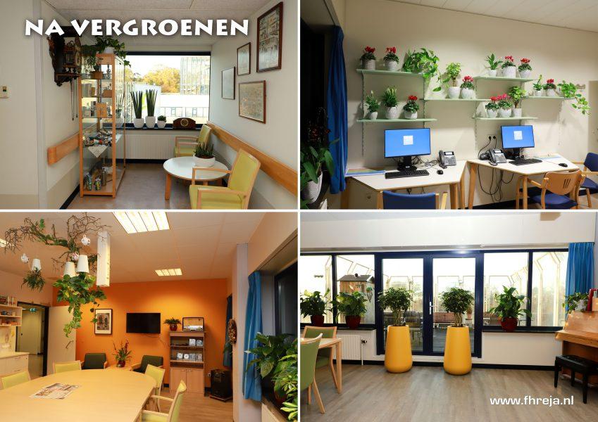 Ziekenhuis Tergooi - Blaricum - Na vergroenen - Fhreja - Ontwerpbureau Groene Leefomgeving